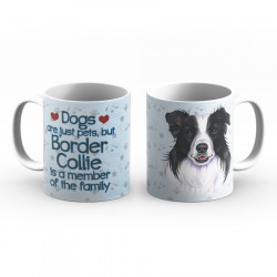 Krus - Dogs are just pets - but Border Collie is a member of the family