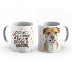 Krus - Love is being owned by a Border Terrier