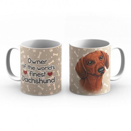Krus - Owner of the worlds finest Dachshund