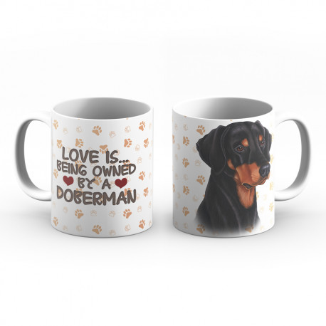 Krus - Love is being owned by a Doberman